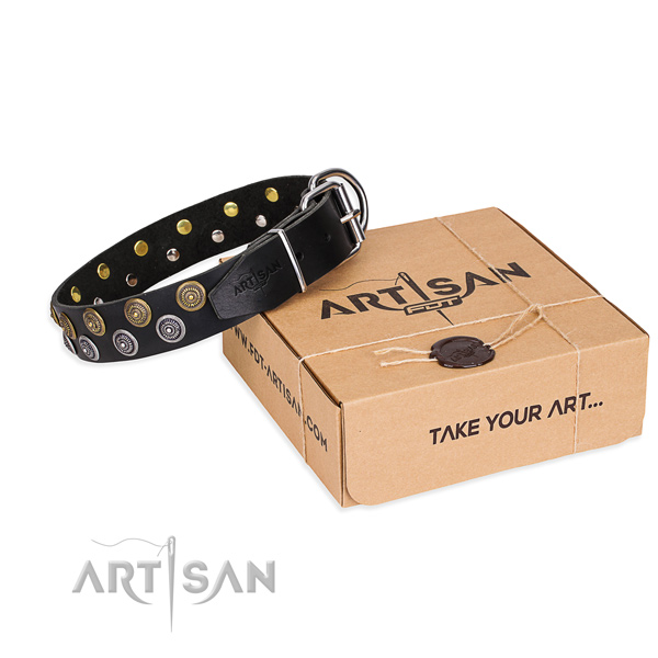 Fancy walking dog collar of reliable genuine leather with adornments