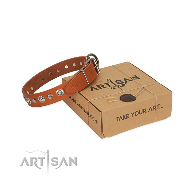 Durable full grain leather dog collar with exquisite adornments
