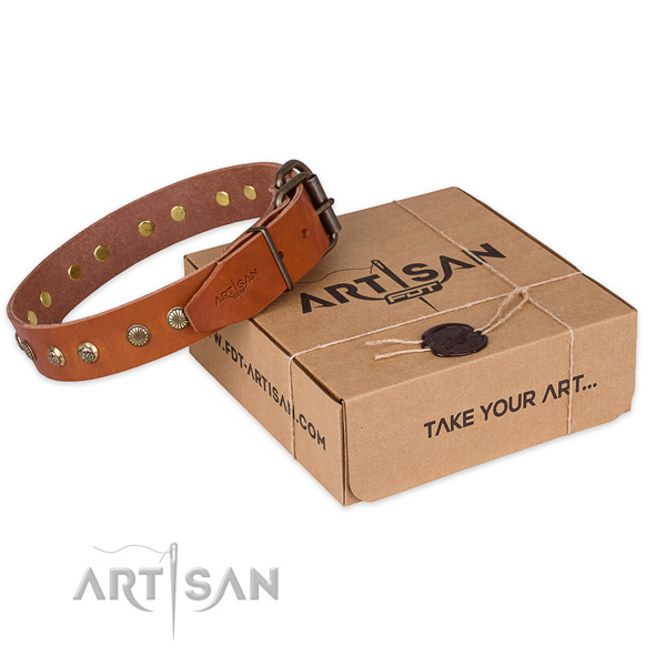 Strong buckle on full grain natural leather collar for your stylish canine