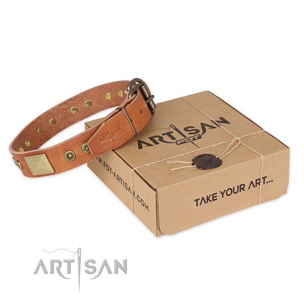Rust resistant traditional buckle on natural genuine leather dog collar for basic training