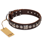"""Pierian spring"" FDT Artisan Brown Leather Mastiff Collar with Silvery Decorations"