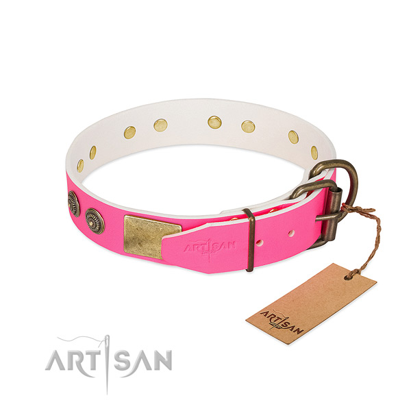 Reliable buckle on full grain natural leather collar for everyday walking your dog