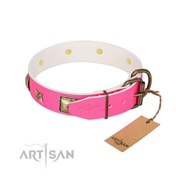 Rust resistant buckle on full grain leather collar for fancy walking your dog
