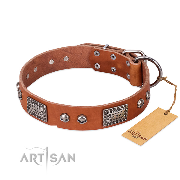 Easy adjustable natural genuine leather dog collar for walking your four-legged friend