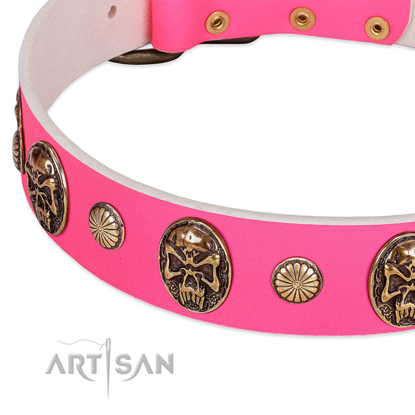 Reliable adornments on natural genuine leather dog collar for your doggie
