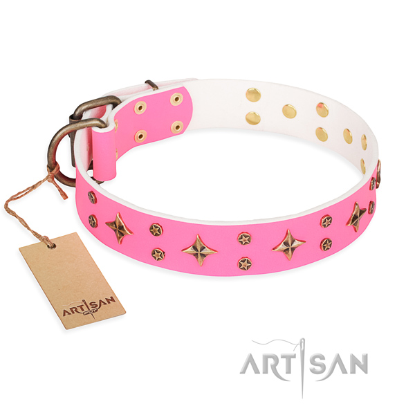 Walking dog collar of fine quality natural leather with adornments