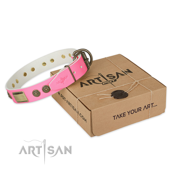 Rust-proof buckle on dog collar for daily use