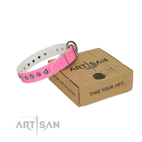 Reliable leather dog collar with stylish design adornments