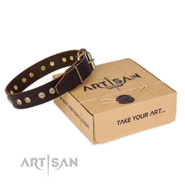 Rust resistant hardware on natural genuine leather collar for your attractive dog