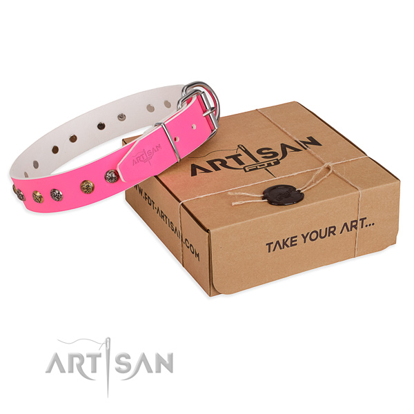 Fancy walking dog collar with Inimitable corrosion resistant embellishments