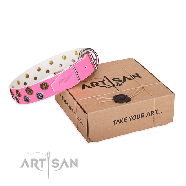 Stylish walking dog collar of top notch leather with adornments