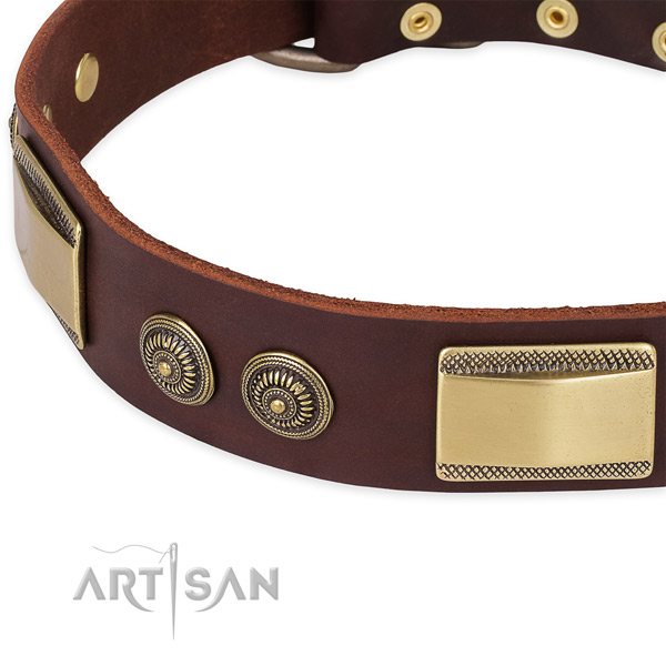Significant genuine leather collar for your lovely dog