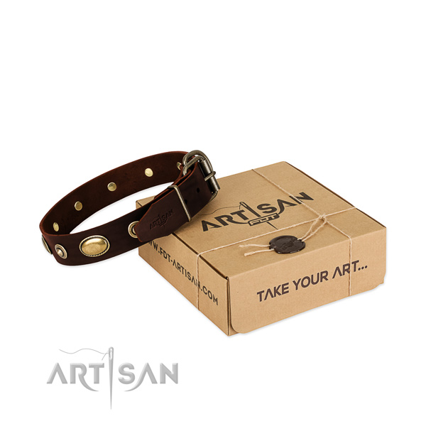 Rust-proof studs on full grain natural leather dog collar for your dog