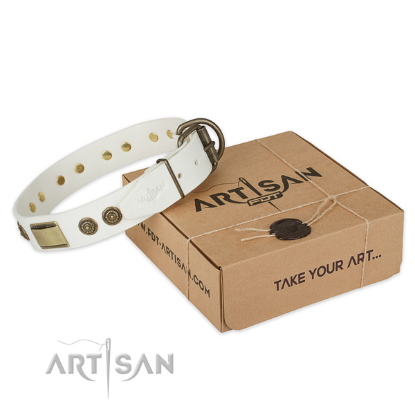 Durable traditional buckle on leather dog collar for daily walking