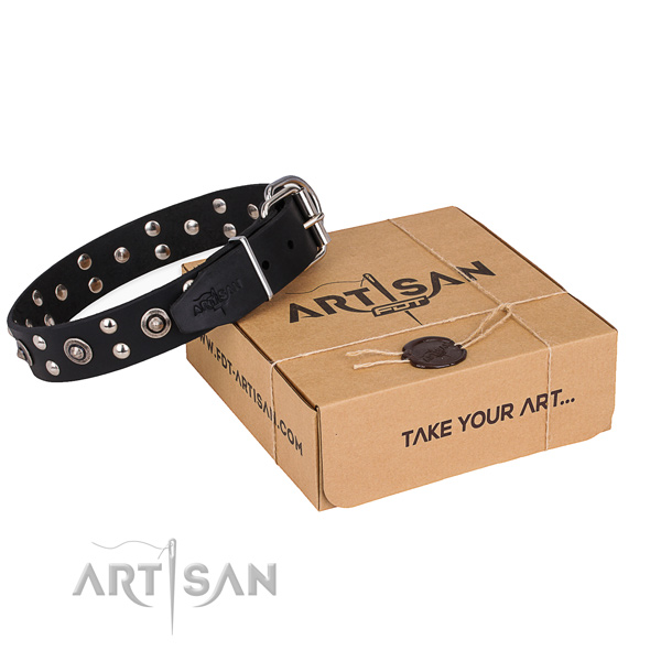 Easy wearing dog collar with Fashionable rust resistant decorations