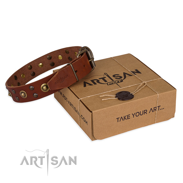 Durable buckle on full grain genuine leather collar for your stylish dog
