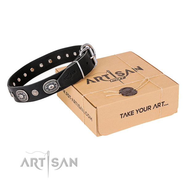 Top rate full grain leather dog collar handcrafted for everyday walking