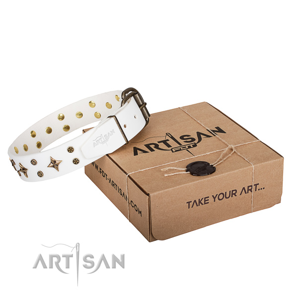 Easy wearing dog collar of high quality natural leather with adornments