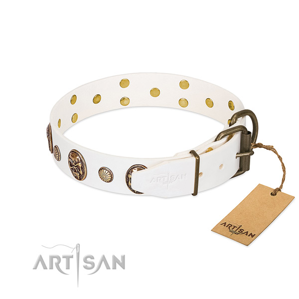 Corrosion resistant hardware on full grain natural leather collar for walking your four-legged friend