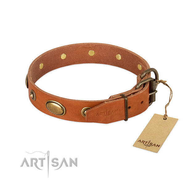 Rust-proof adornments on full grain natural leather dog collar for your pet