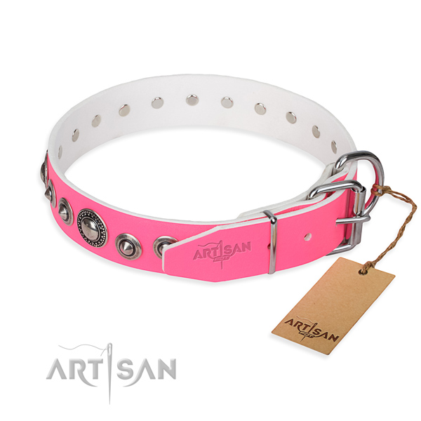 Full grain natural leather dog collar made of top notch material with rust resistant adornments