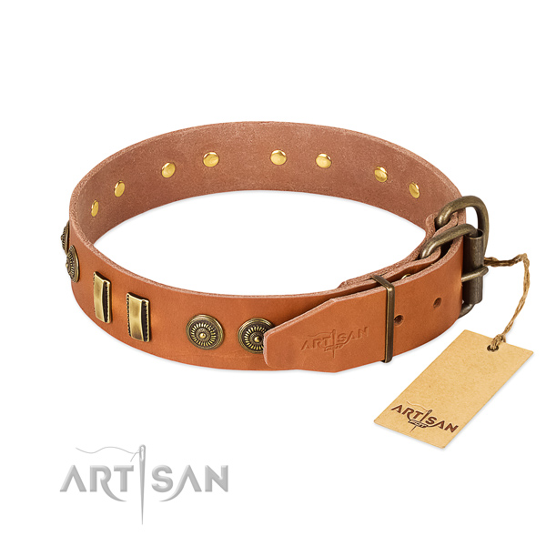 Corrosion resistant buckle on full grain leather dog collar for your dog