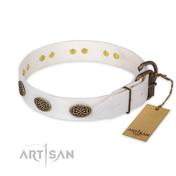 Durable hardware on full grain natural leather collar for stylish walking your pet