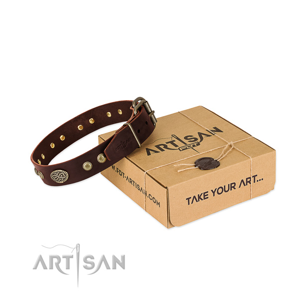 Corrosion proof traditional buckle on full grain natural leather dog collar for your pet