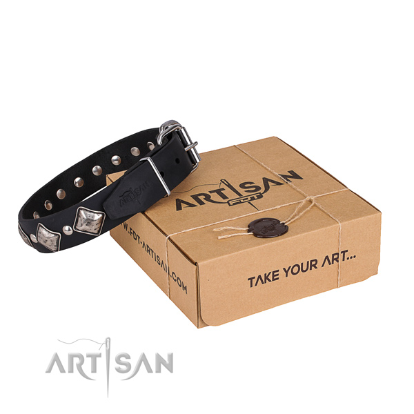 Stylish walking dog collar of durable full grain leather with decorations