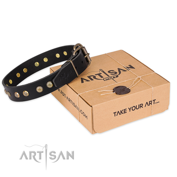 Durable D-ring on leather collar for your beautiful pet