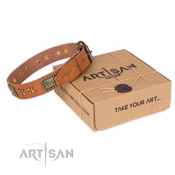Reliable buckle on full grain leather collar for your lovely canine