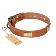 """Enchanting Spectacle"" FDT Artisan Tan Leather Mastiff Collar with Old Bronze Look Plates and Round Studs"