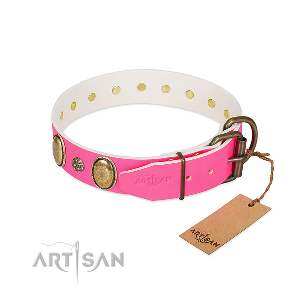 Top notch natural leather dog collar with embellishments