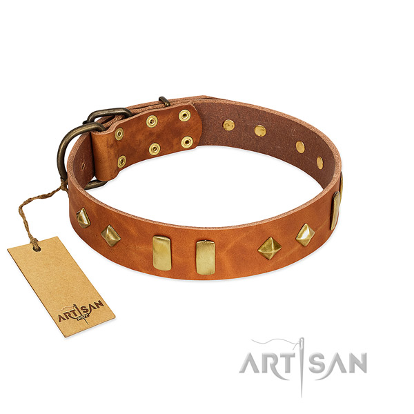 Easy wearing top rate leather dog collar with studs