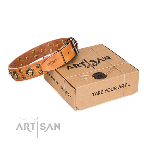 Daily use dog collar of top quality natural leather with decorations