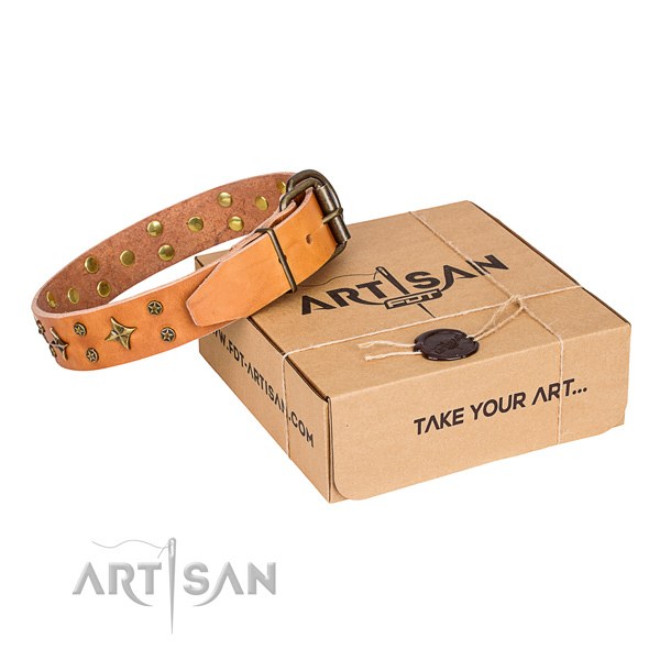 Daily use dog collar of top notch full grain leather with studs