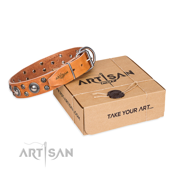 Everyday use dog collar of top notch genuine leather with decorations