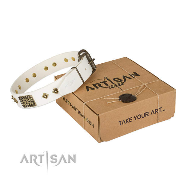 Stylish full grain leather collar for your attractive canine