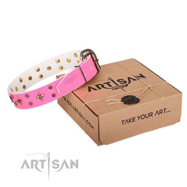 Daily use dog collar of fine quality leather with decorations