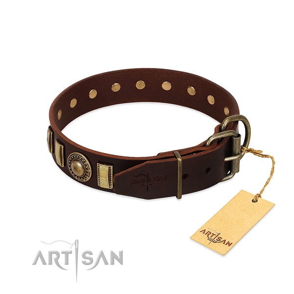 Stylish leather dog collar with rust-proof traditional buckle