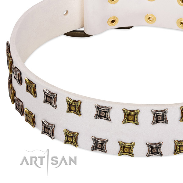 Full grain genuine leather dog collar with adornments for your attractive canine