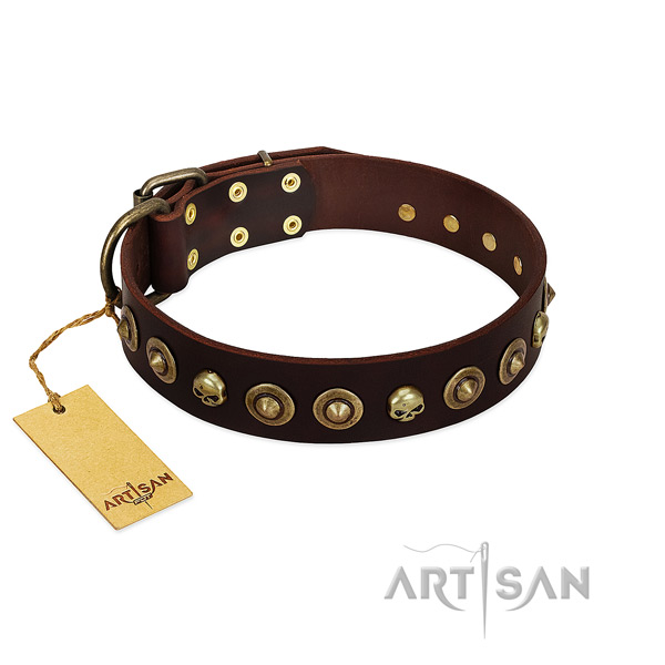 Full grain genuine leather collar with significant adornments for your dog