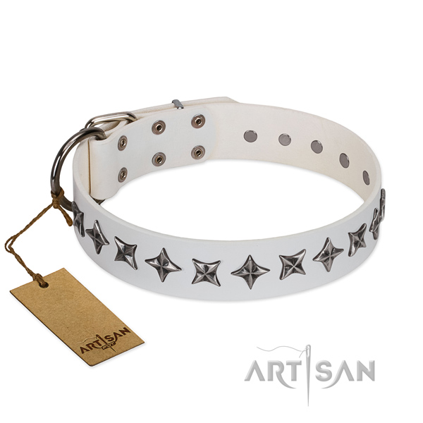 Everyday use dog collar of durable leather with adornments