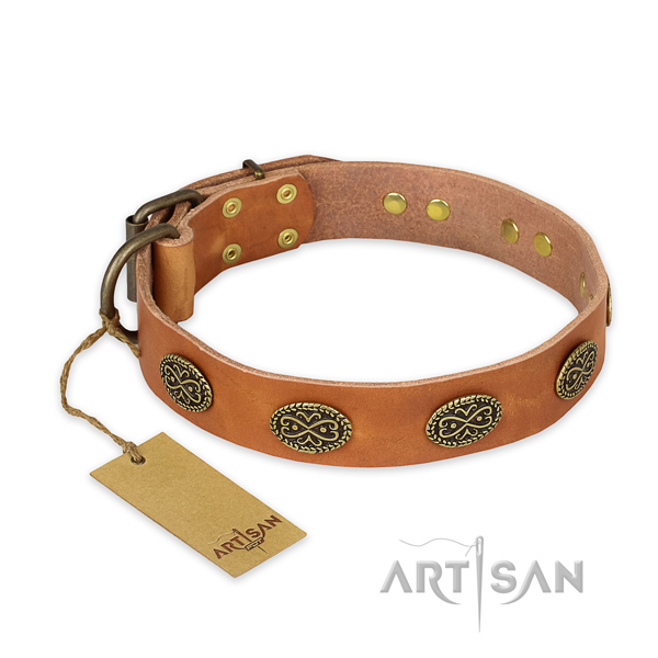 Unusual full grain leather dog collar with corrosion resistant fittings