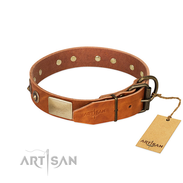 Corrosion resistant embellishments on full grain leather dog collar for your four-legged friend