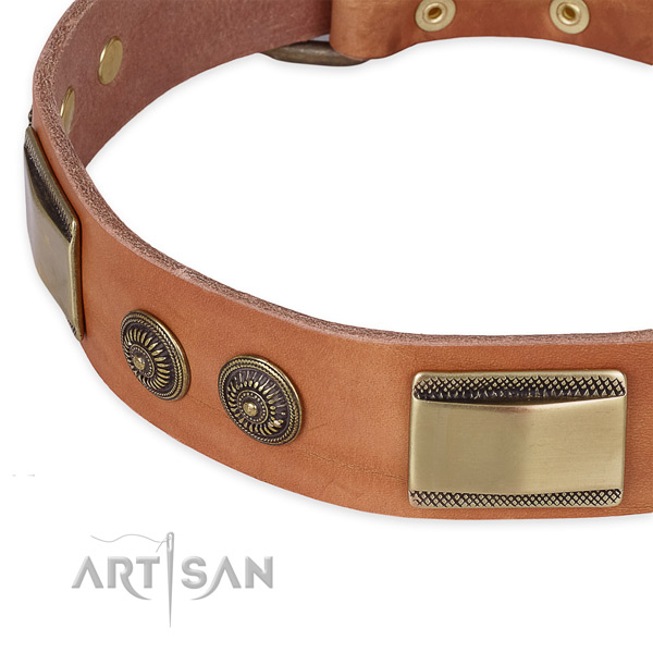 Extraordinary leather collar for your impressive pet