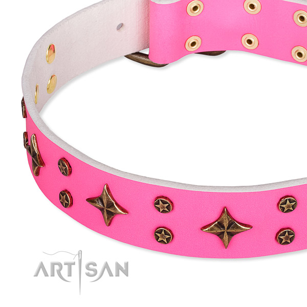 Everyday walking decorated dog collar of finest quality natural leather