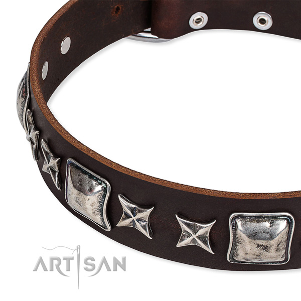 Comfortable wearing decorated dog collar of durable full grain leather