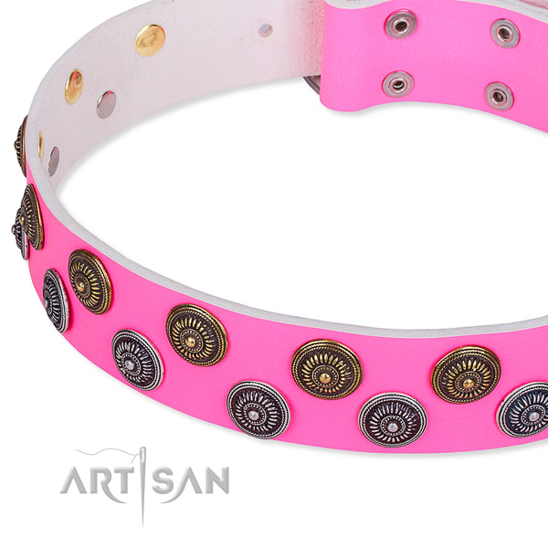 Handy use embellished dog collar of high quality full grain leather