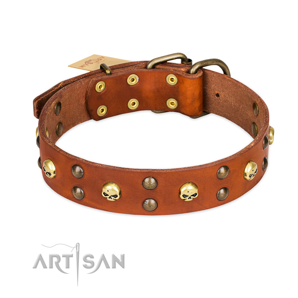Basic training dog collar of durable full grain leather with embellishments